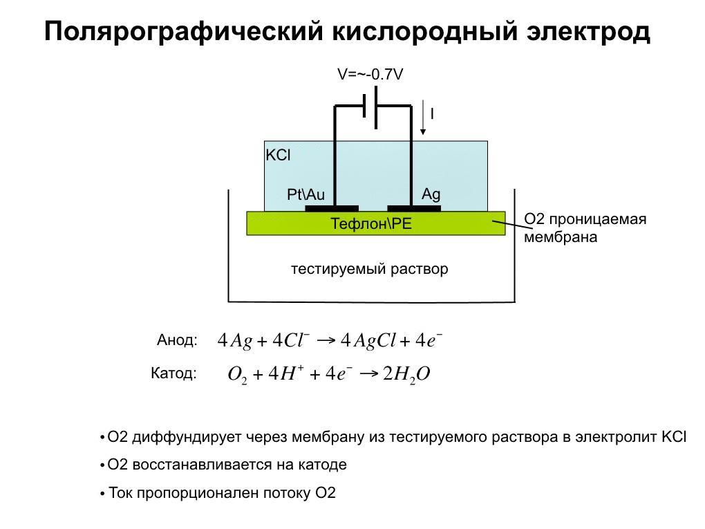 Иллюстрация принципа работы полярографических электродов для измерения растворенного кислорода